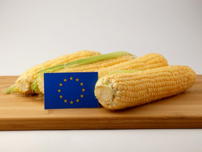 European Commissioner for Agriculture