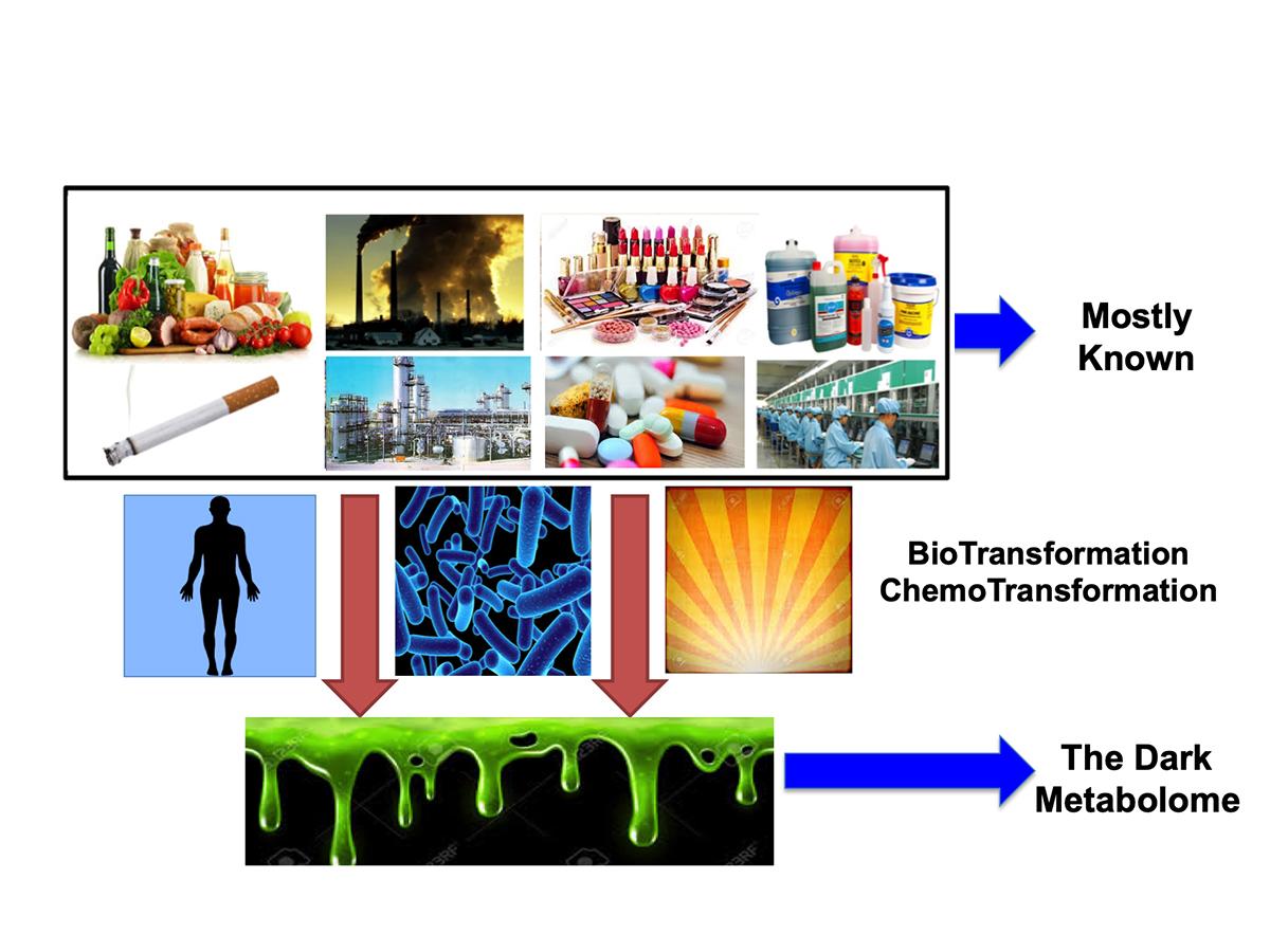 dark metabolome
