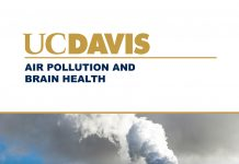 air pollution and brain health, pollutants