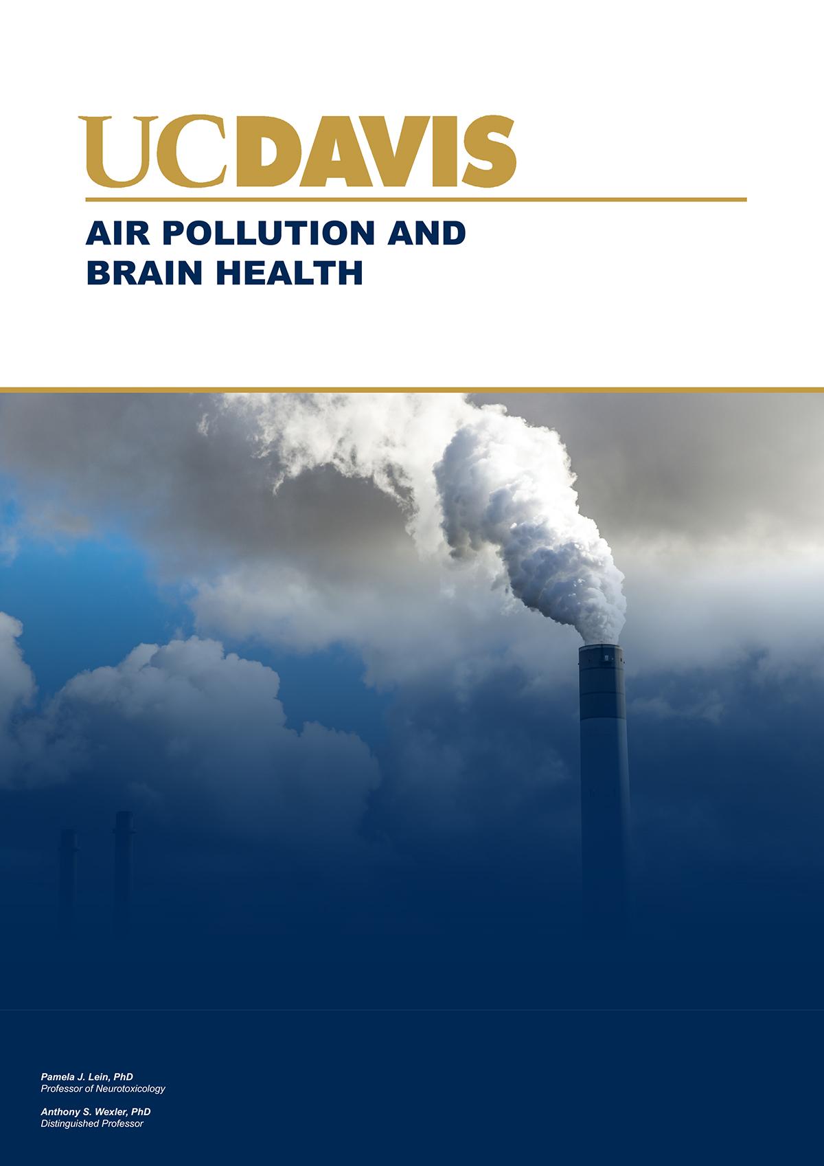 air pollution and brain health, pollutants