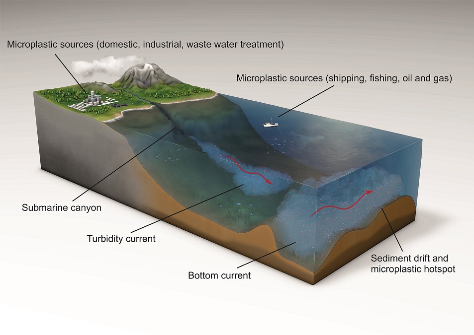 microplastic on seafloor, ecosystem