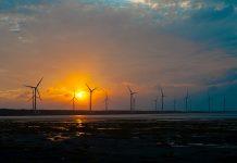 wind farm block development