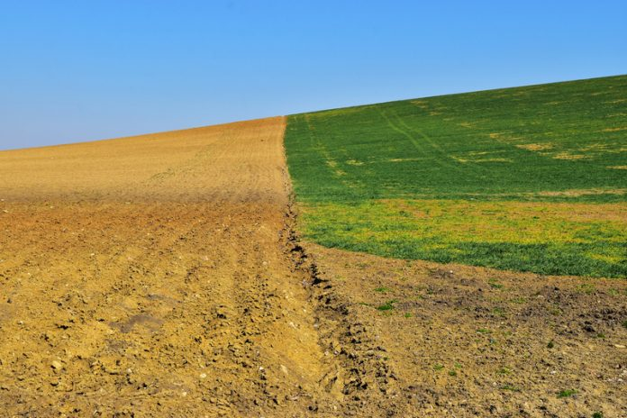 Soil and agriculture