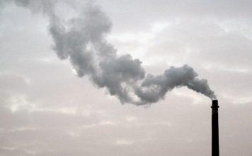 net zero carbon economy