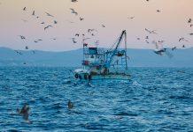 fisheries bill