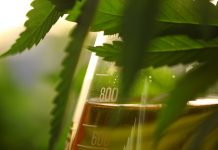 compliance for medical cannabis