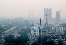 global carbon emissions, transport