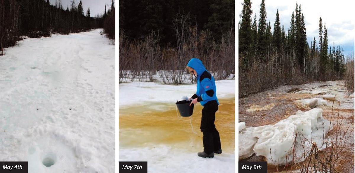 arctic rivers, spring flood