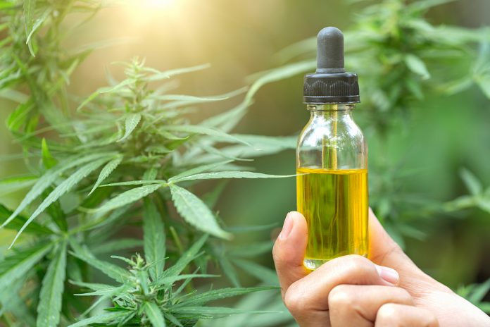 cbd oil and cancer