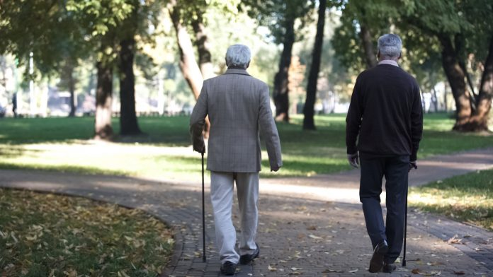 europe's ageing society