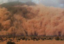global dust emissions