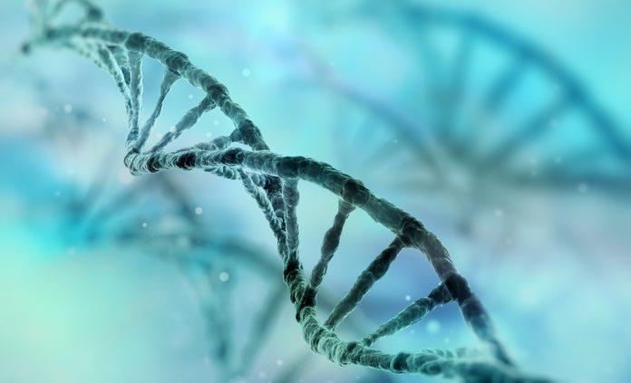 click chemistry, RNA ligation