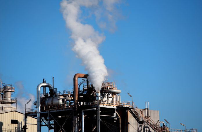 net zero targets, carbon