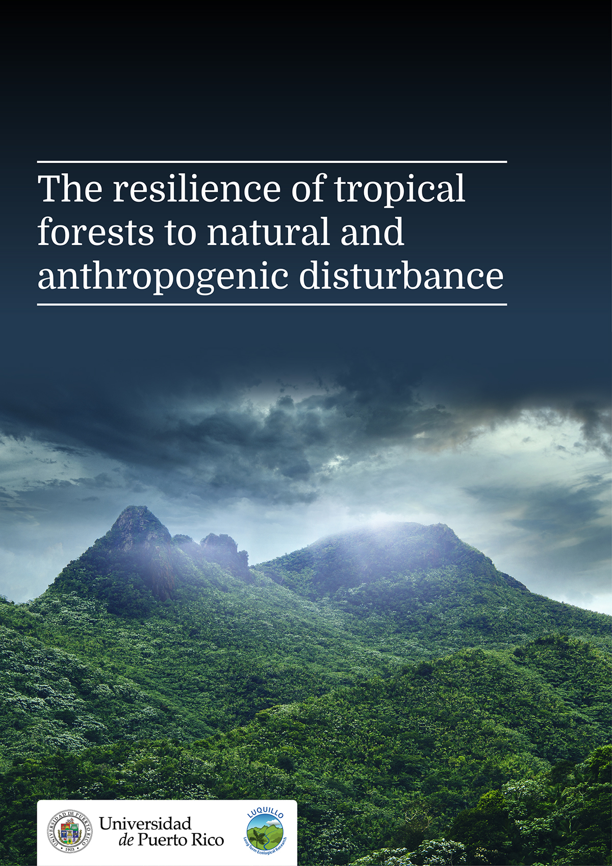 tropical forests, LEF