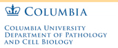 Department of Pathology and Cell Biology