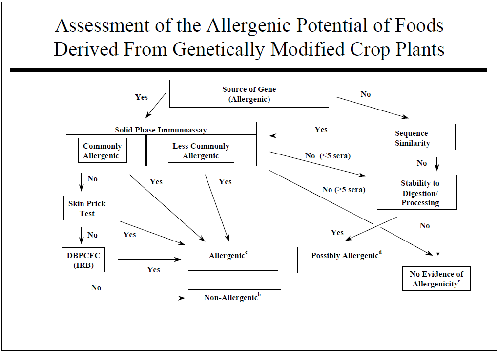 GE crops and allergens