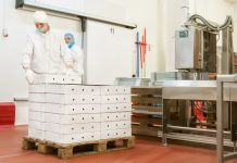 sustainable food manufacturing