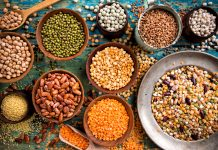 genetic resources, legume