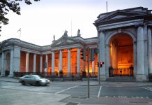 irish action plan, business and human rights