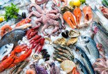 aquaculture sector, bioeconomy
