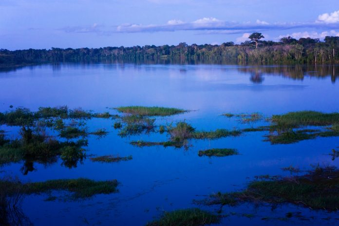 amazon deforestation, carbon emissions