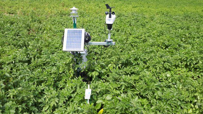 integrated pest management, IPMWORKS