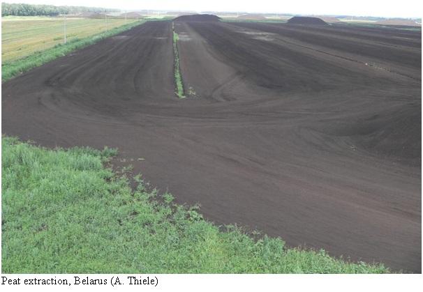 Peat Extraction