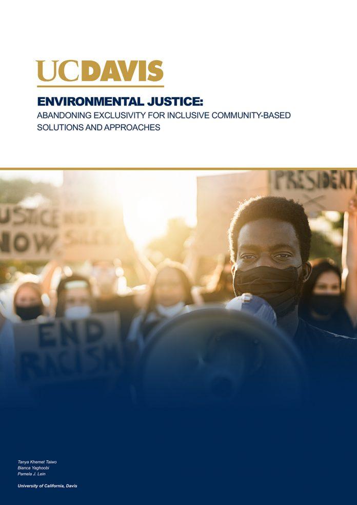 environmental justice, african american