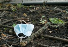 environmental crime enforcement