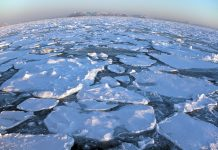 summertime arctic ocean, arctic ocean
