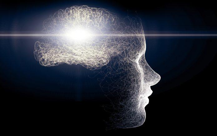 brain creates motivation, receptors