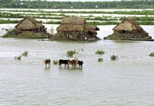 flood mapping tool, agricultural planning